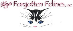 Keys Forgotten Felines